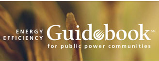 Energy Efficiency Guidebook for Public Power Communities